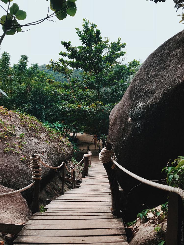 Джунгли на Симиланских островах
