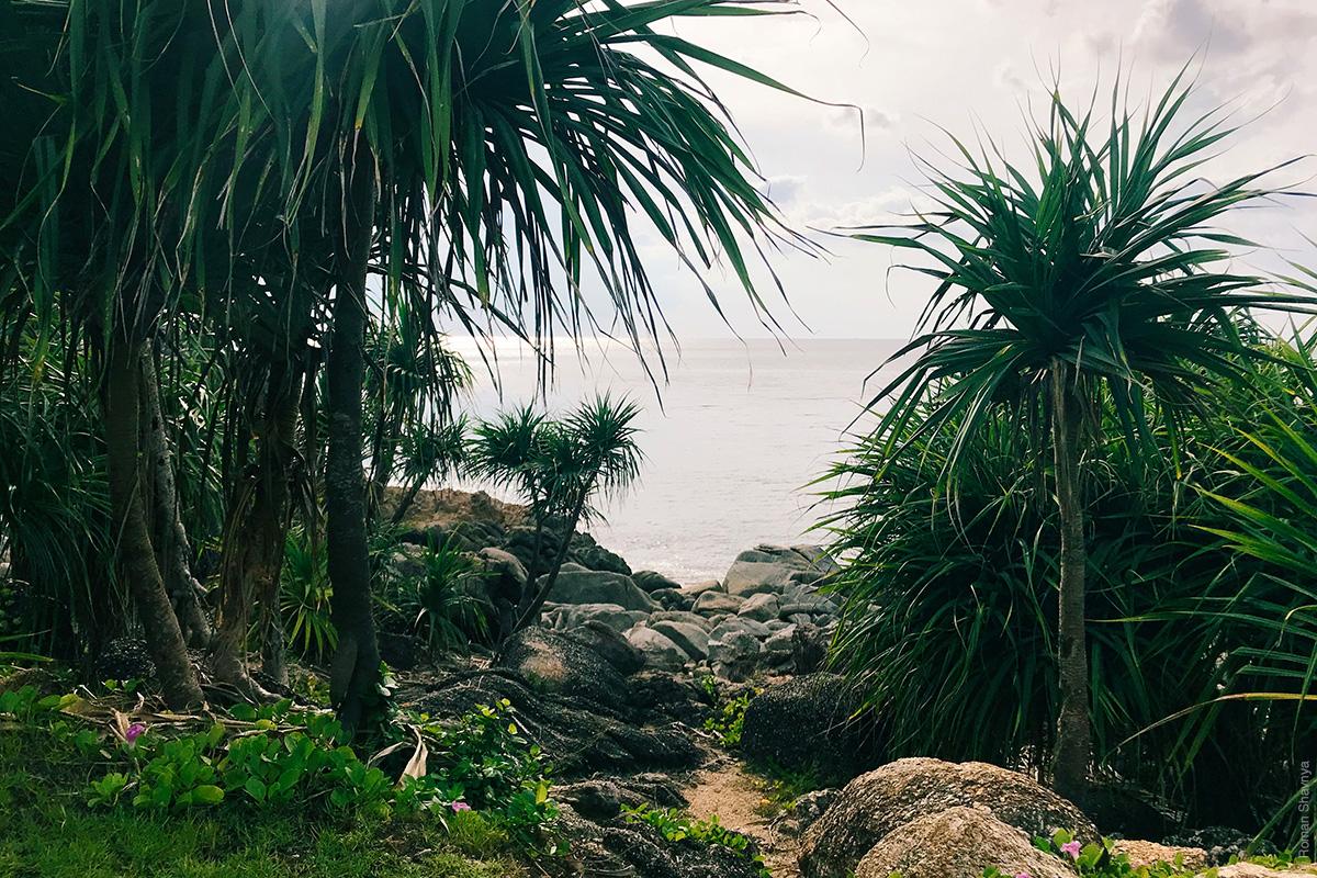 Пляж Парадайз на Патонге