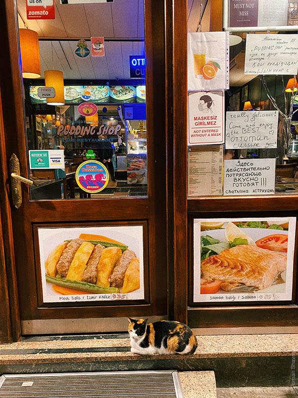 Кот и еда в Стамбуле
