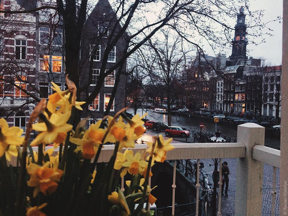 Красота в Амстердаме