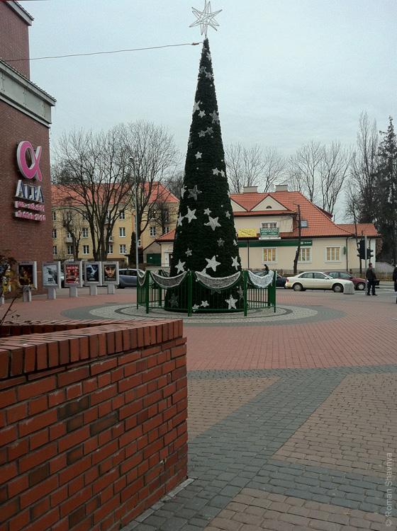Декоративный конус вместо ёлки в Белостоке