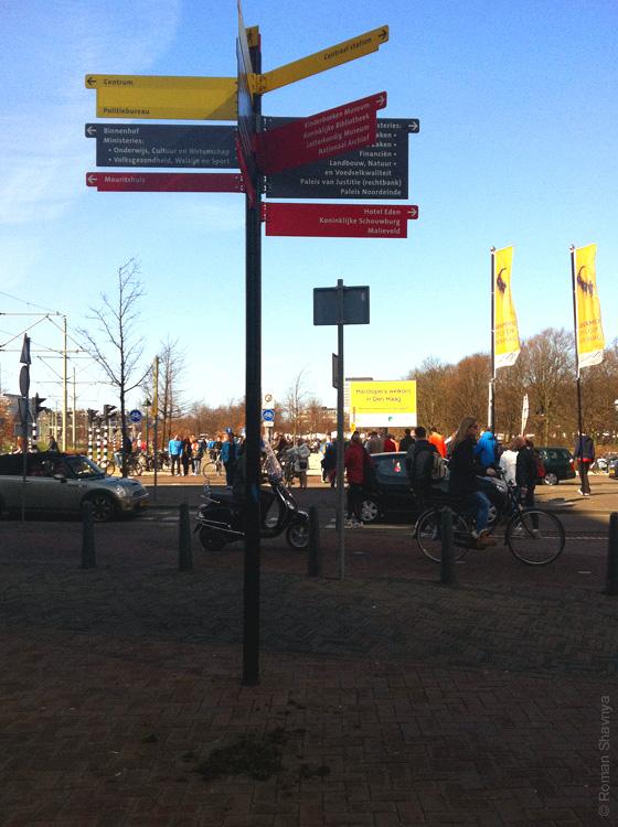 Куча говна в Гааге