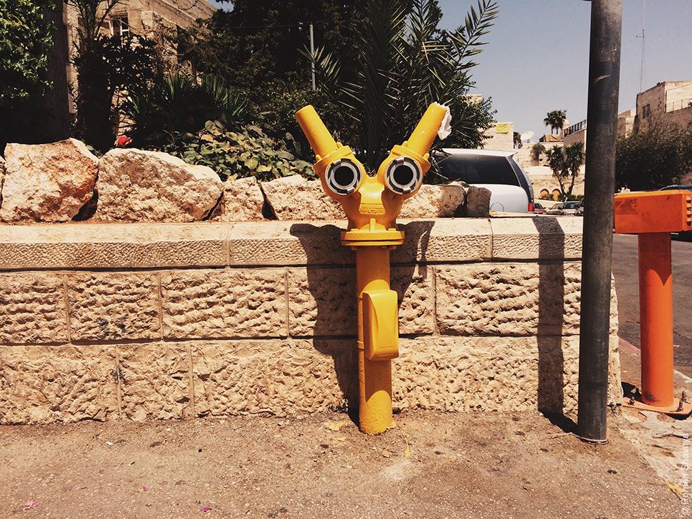 Робот Валл-и на улице в Иерусалиме