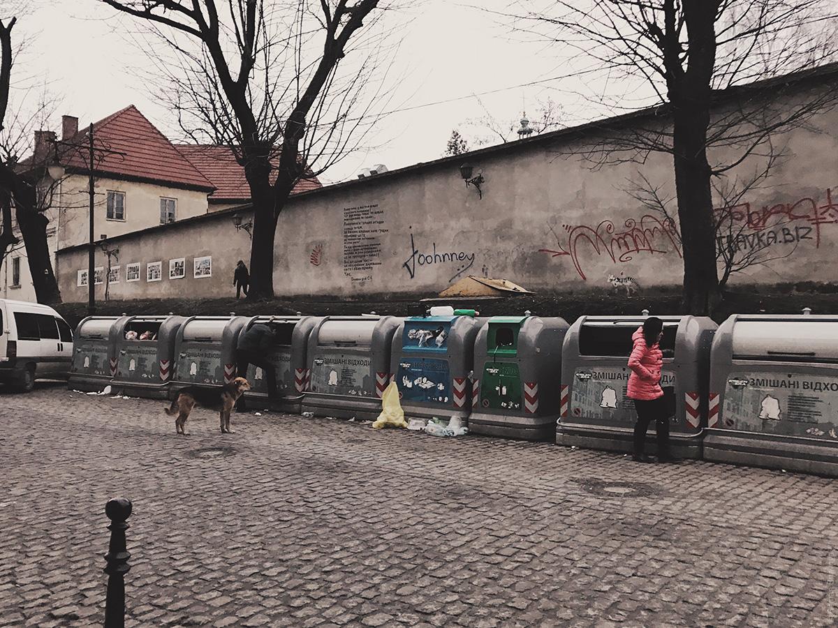 Люди на мусорках во Львове