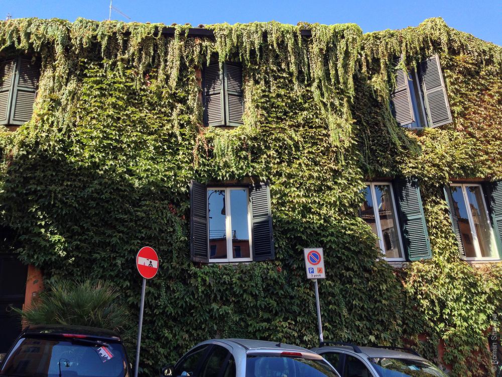 Дом в растениях в Риме